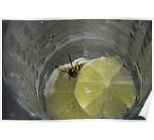 Wasps like martini also. Poster