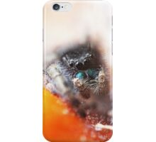 Wolf Spider  iPhone Case/Skin