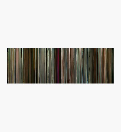Moviebarcode: Potiche (2010) Photographic Print