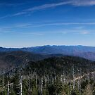 View From Clingman's Dome by Peyton Duncan
