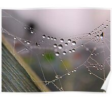 Web Droplets Poster
