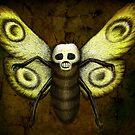 Skull Moth by beanarts