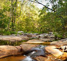 Mothar Mountain Rockpool Falls by Kate Wall