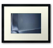 295/365 Framed Print