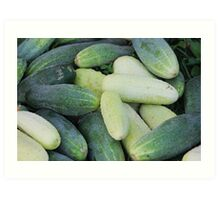 Miscellaneous cucumbers. Art Print