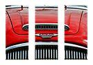 Austin Healey triptych by David Carton