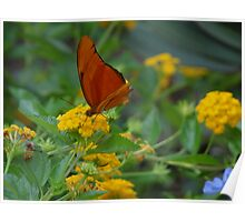 Flowers with a butterfly Poster