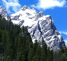 The Grand Teton in Jackson Hole by mkbaldwin2