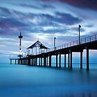 Brighton Jetty by Darryl Leach