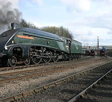 Steam Locomotive Union of South Africa by Scott Read