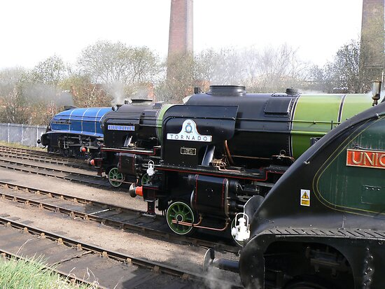 Locomotive Lineup at Barrow Hill by Scott Read