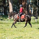 Canter by Michelle Wrighton