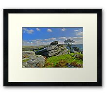 Dartmoor: Heckwood Tor Framed Print
