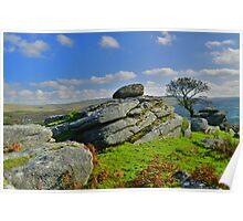 Dartmoor: Heckwood Tor Poster