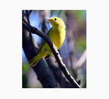 Yellow Warbler sitting in tree Unisex T-Shirt