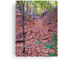 Leaf Avalanche Canvas Print