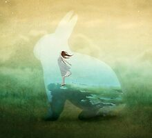 Let your hare down  by Amanda  Cass