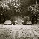 Snow-Covered Street by Erika  Hastings