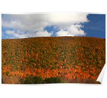 Looking East From Bristol Mountain, NY Poster