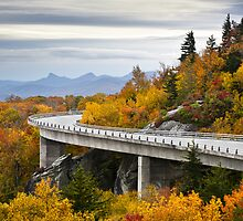 Linn Cove Viaduct - Blue Ridge Parkway Fall Foliage by Dave Allen