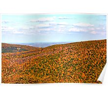 View from atop Bristol Mountain, NY Poster