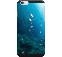 Fishes 2 iphone cover iPhone Case/Skin