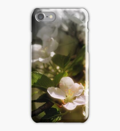 apple blossoms 7 iPhone Case/Skin