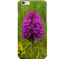Pyramidal Orchid - iPhone Case iPhone Case/Skin