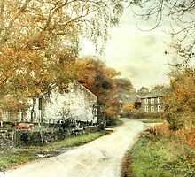 Autumn In Yorkshire by patrixpix