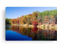 Strahl Lake, Brown Co. St. Park, Indiana Canvas Print