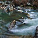 the raging Bear River by Lenny La Rue, IPA