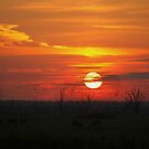 Golden Moments by AnnieSnel