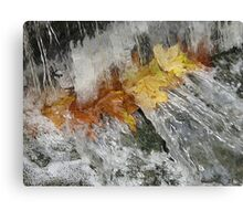 Awash With Color Canvas Print