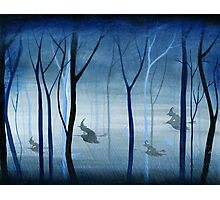 Witches Flying Low Through the Forest Photographic Print