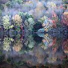Autumn is just amazing...  by ZeeZeeshots
