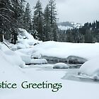 Solstice Greetings by teresalynwillis