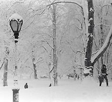 new york winter by Brian Burke