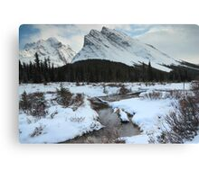 Elbow Pass valley III Canvas Print