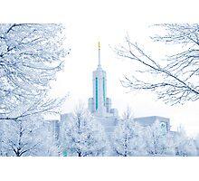 Mt. Timpanogos Temple Frosted Trees 20x30 Photographic Print