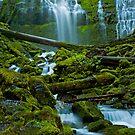 Proxy Falls by Nick Boren