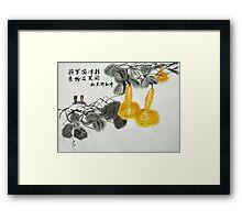 bottle gourd  Framed Print