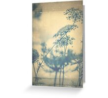 Chinoiserie Queen Anne's Lace Blue Greeting Card