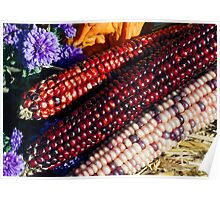 Indian Corn in Autumn Decor Poster