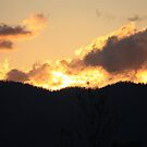 Sunset from my back window - Kennedy, North Queensland, Australia by myhobby