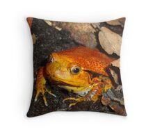 Tomato Frog - Madagascar Throw Pillow