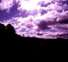 purple view by lorainek