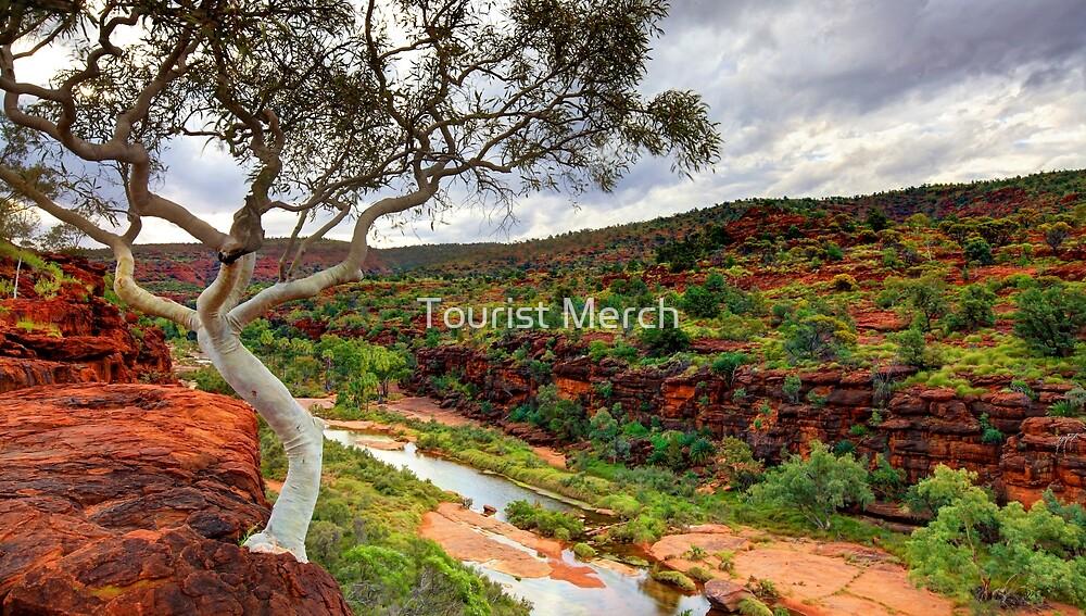 The Finke River - Palm Valley by Adam Gormley