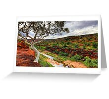 The Finke River - Palm Valley Greeting Card