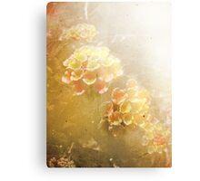 shining growth Canvas Print