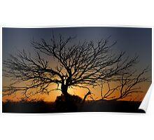 Sunset - White Cliffs NSW Australia Poster